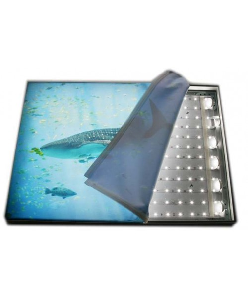 Fabric-Lite Light Box (3)